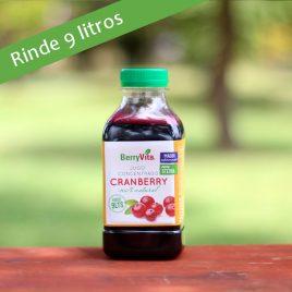 Jugo Concentrado de Cranberry c/Maqui endu. con stevia 450 cc